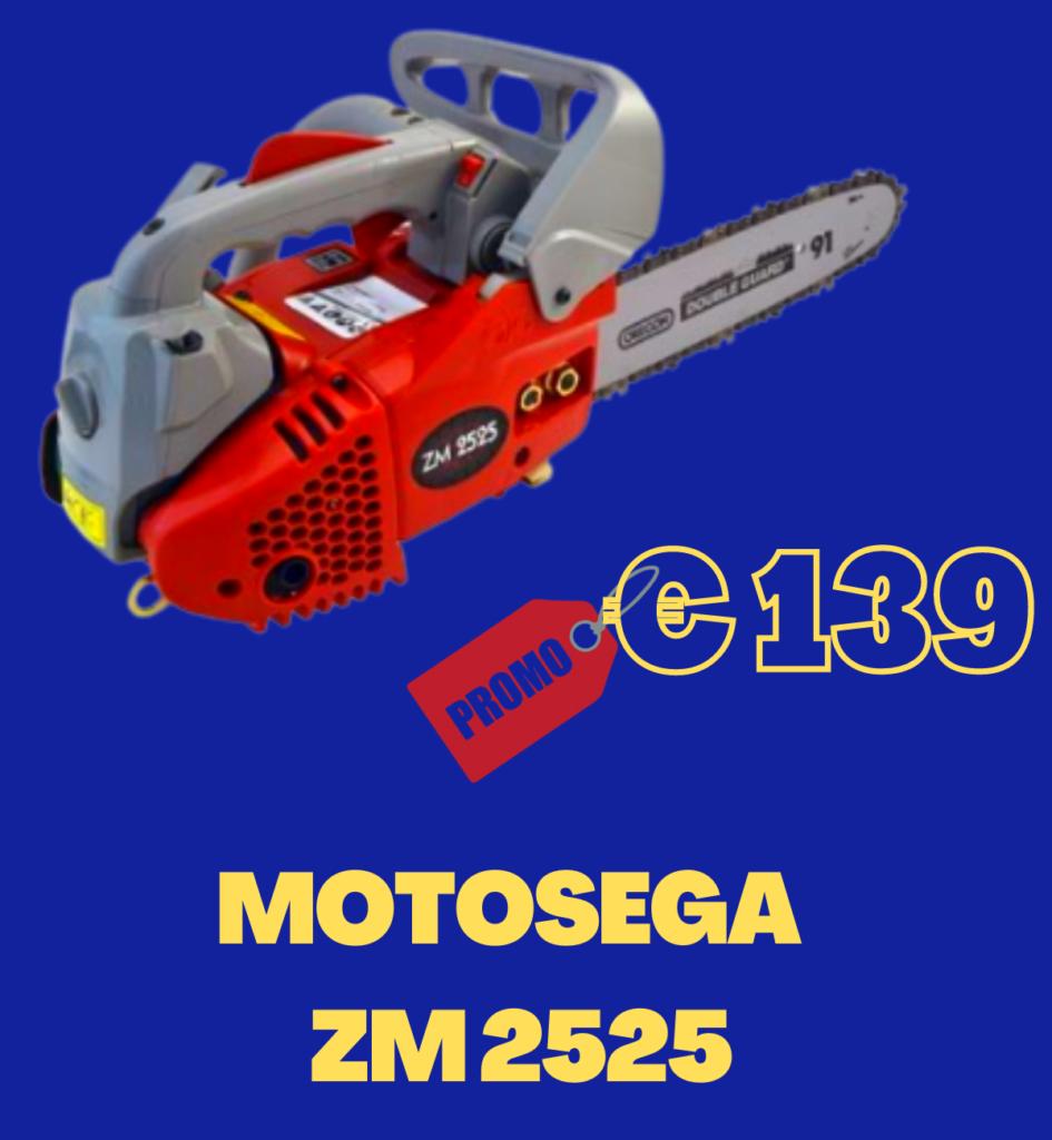 MOTOSEGA ZM2525